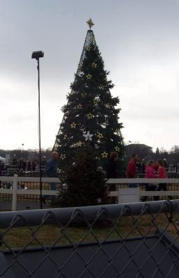 The National Christmas Tree - 2012 image. Click for full size.
