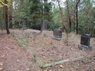 Lake Madrone Cemetery image. Click for full size.