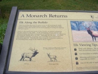 A Monarch Returns Marker image. Click for full size.