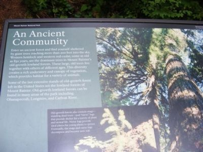 An Ancient Community Marker image. Click for full size.