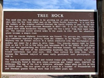 Tree Rock Marker image. Click for full size.