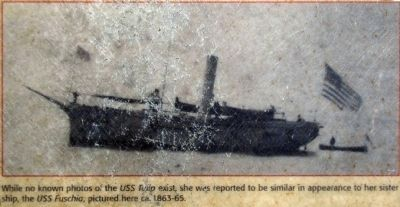 USS Fuschia image. Click for full size.