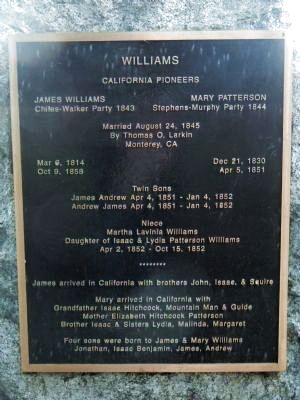 Williams Marker image. Click for full size.