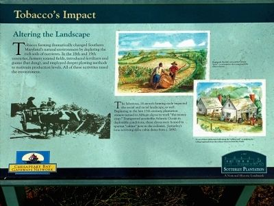 Tobacco's Impact Marker image. Click for full size.