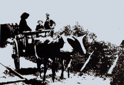 An ox-cart on the rolling road image. Click for full size.