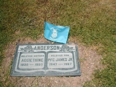 PFC James Anderson Grave Site image. Click for full size.