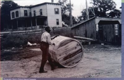 Rolling a Hogshead of Tobacco Down to the Leonardtown Wharf image. Click for full size.
