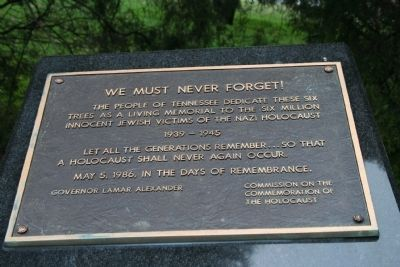 We Must Never Forget image. Click for full size.