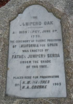 Junipero Oak Marker image. Click for full size.