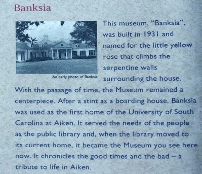 Banksia image. Click for full size.