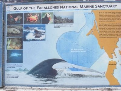 Gulf of the Farallones National Marine Sanctuary Marker image. Click for full size.