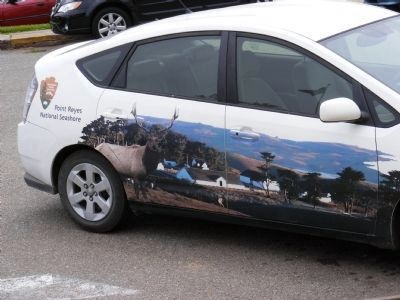 Car Painted with Point Reyes National Seashore Scene image. Click for full size.