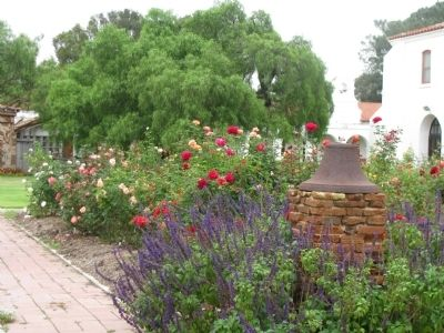 Mission San Luís Rey Courtyard Gardens & Ancient Pepper Tree image. Click for full size.