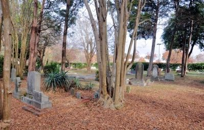 Walker Family Cemetery image. Click for full size.