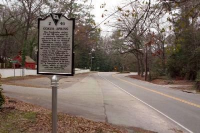 Coker Spring Marker, looking west along South Boundary Avenue image. Click for full size.