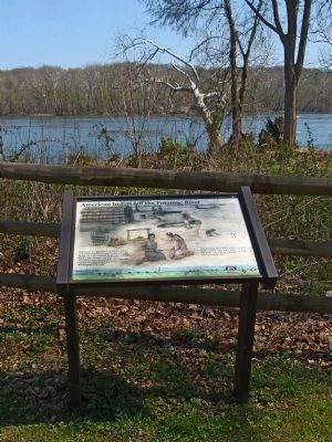 American Indians of the Potomac River Marker image. Click for full size.