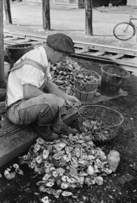 Shucking Oysters, Bivalve, New Jersey image. Click for full size.