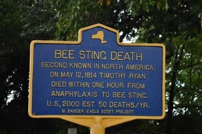 Bee Sting Death Marker image. Click for full size.