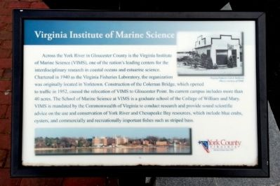 Virginia Institute of Marine Science Marker image. Click for full size.