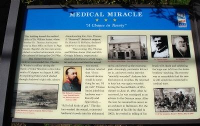 Medical Miracle Marker image. Click for full size.