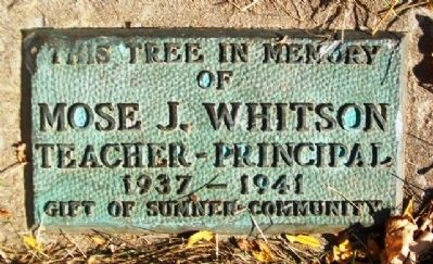 Sumner School Whitson Marker image. Click for full size.