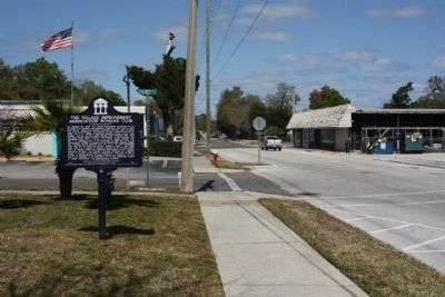 The Village Improvement Association Woman's Club Marker, looking north on Palmetto Avenue image. Click for full size.