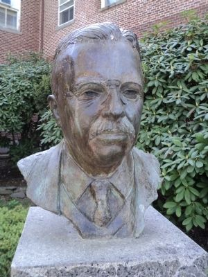Closeup of Theodore Roosevelt Bust image. Click for full size.
