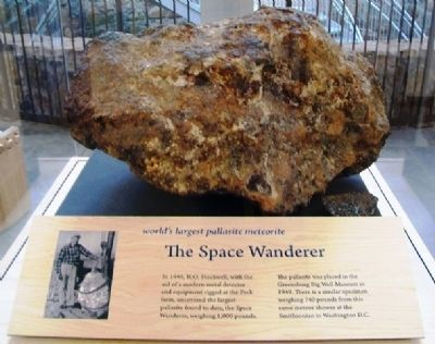 World's Largest Pallasite Meteorite image. Click for full size.
