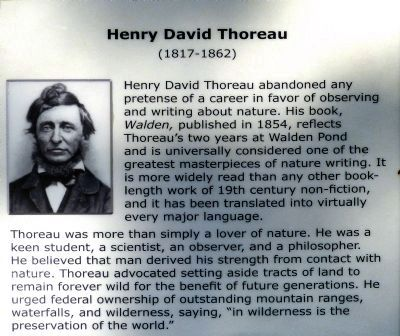 Henry David Thoreau<br> (1817-1862) image. Click for full size.
