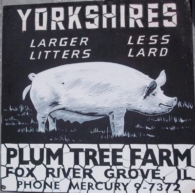 Plum Tree Farm Sign image. Click for full size.
