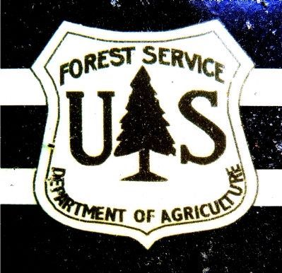 US Forest Service, Department of Agriculture image. Click for full size.
