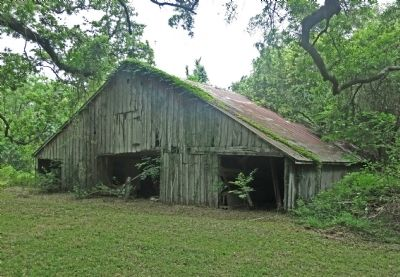 A Current Picture of the Stringfellow Orchards Barn image. Click for full size.