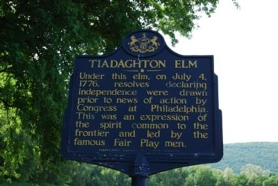 Tiadaghton Elm Marker image. Click for full size.