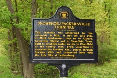 Snowshoe/Packersville Turnpike Marker image. Click for full size.