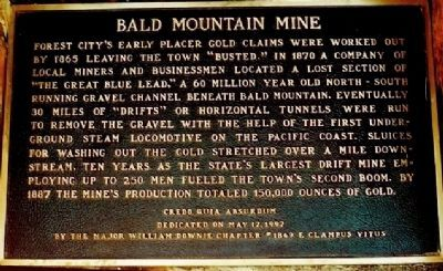 Bald Mountain Mine Marker image. Click for full size.