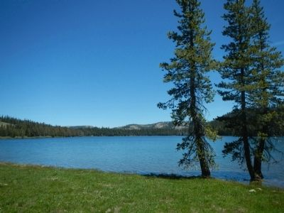 Meadow Lake image. Click for full size.