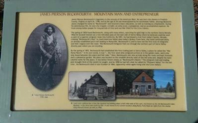 James Pierson Beckwourth: Mountain Man and Entrepreneur Panel 3 image. Click for full size.