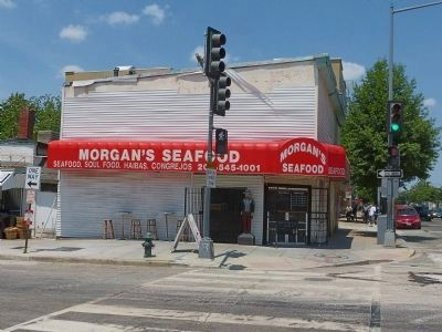 Morgan's Seafood image. Click for full size.