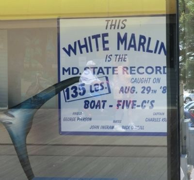 """The White Marlin Capital of the World"" Marker image. Click for full size."