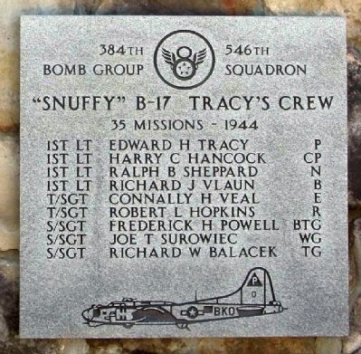 384th Bombardment Group 546th Squadron image. Click for full size.