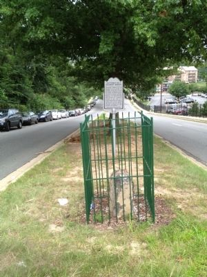 Southwest No. 6 Boundary Stone and Marker image. Click for full size.