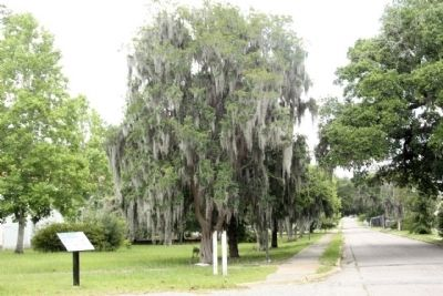 Charleston Naval Hospital Historic District Marker along Turnbull Avenue looking east image. Click for full size.