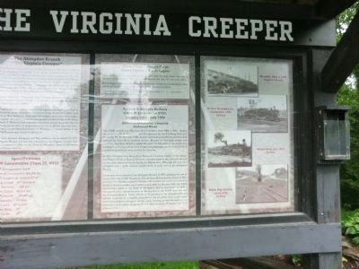The Virginia Creeper Marker (right side) image. Click for full size.