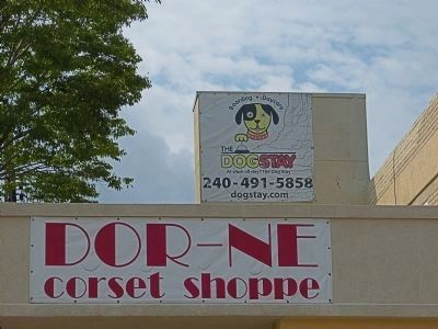 Dor-Ne Corset Shoppe & The DogStay image. Click for full size.