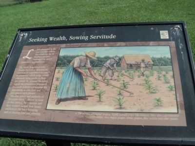 Seeking, Wealth, Sowing Servitude Marker image. Click for full size.