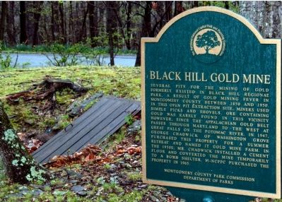 Black Hill Gold Mine Marker image. Click for full size.