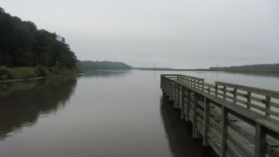 Patuxent River image. Click for full size.