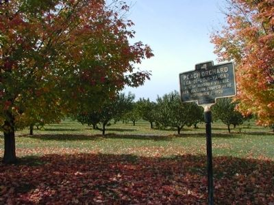 Peach Orchard Marker in situ image. Click for full size.
