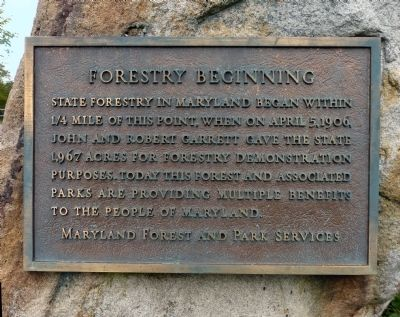 Forestry Beginning Marker image. Click for full size.