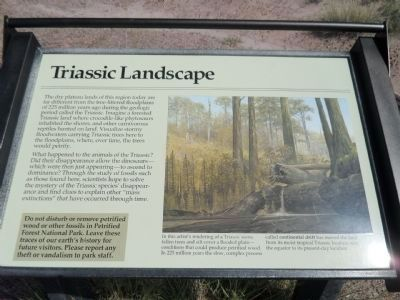 Triassic Landscape Marker image. Click for full size.